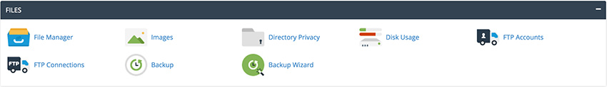 cPanel Files Options